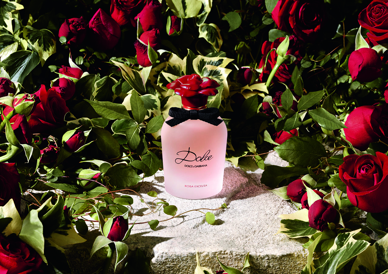 Dolce Gabbana Dolce Rosa Excelsa: New Fragrance from the Dolce Family