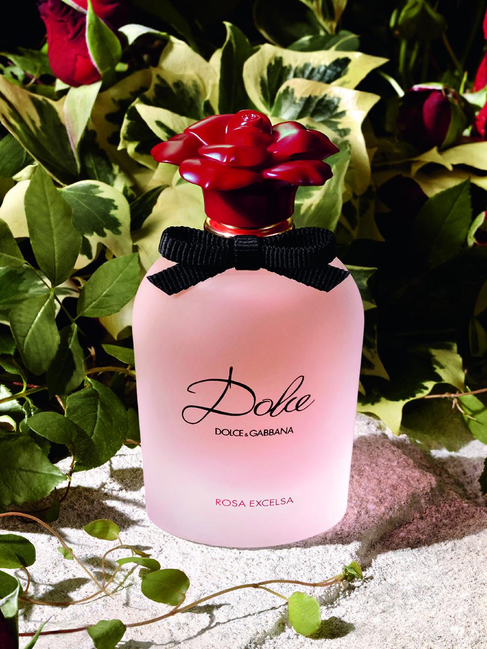 Dolce Gabbana Dolce Rosa Excelsa Yeni Parfümü