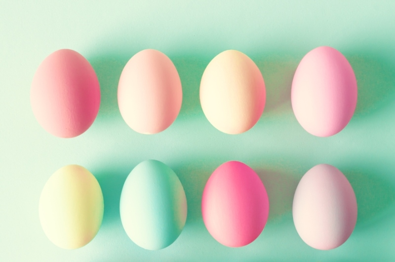 egg-shot-web-2