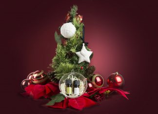 Have Yourself A Gilded Christmas with Mt. Sapola - Pamper.My