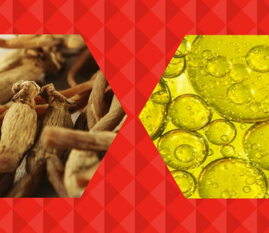 6 Benefits of Red Ginseng and Horse Oil For Your Skin-Pamper.my