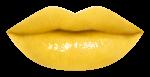 shu uemura Rouge Unlimited Yellow mixer-Pamper.my